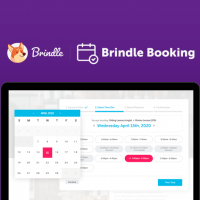 Brindle_logo_small